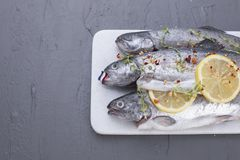 Raw fish. Trout with lemon and spices on a white stone board. Gray background. Free space for text. copy space. flat lay.  Royalty Free Stock Images