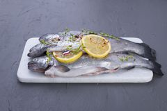 Raw fish. Trout with lemon and spices on a white stone board. Gray background. Free space for text. copy space. flat lay.  Stock Photography