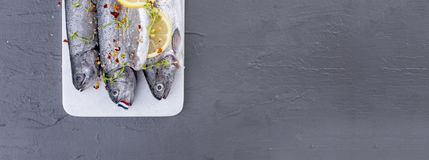 Raw fish. Trout with lemon and spices on a white stone board. Gray background. Free space for text. copy space. flat lay. banner. Raw fish. Trout with lemon and Stock Images