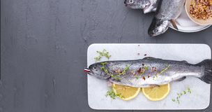 Raw fish. Trout with lemon and spices on a white stone board. Gray background. Free space for text. copy space. flat lay. banner. Raw fish. Trout with lemon and Royalty Free Stock Photography