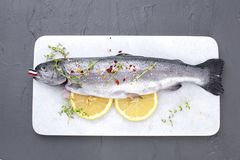 Raw fish. Trout with lemon and spices on a white stone board. Gray background. Free space for text. copy space. flat lay. Raw fish. Trout with lemon and spices Royalty Free Stock Photography
