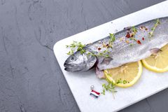 Raw fish. Trout with lemon and spices on a white stone board. Gray background. Free space for text. copy space. flat lay,. Raw fish. Trout with lemon and spices Stock Image