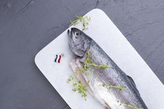 Raw fish. Trout on a white stone board. Gray background. Free space for text. Copy space. Raw fish. Trout on a white stone board. Gray background. Free space Stock Images