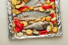 Raw fish and vegetables on the baking tray Royalty Free Stock Photography