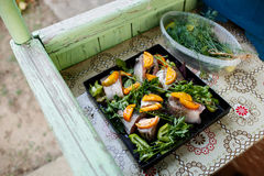 Raw fish with vegetables and herbs on the pan. Raw fish on the pan royalty free stock photos