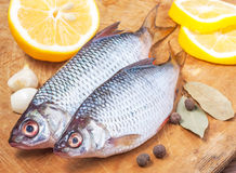 Raw fish with vegetables and spices Stock Photography