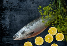 Raw fish whole salmon with lemons and dill