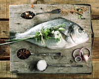 Raw Fish on Wooden Board with Fresh Seasonings Stock Image