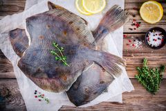 Raw flounder fish, flatfish on wooden table. Raw flounder fish, flatfish on wooden background Royalty Free Stock Photography