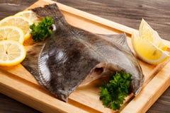 Raw flounder fish Stock Image