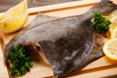Raw flounder fish Royalty Free Stock Images