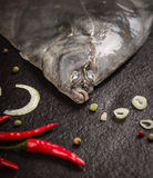 Raw flounder head with spices on dark stone background. Close up Royalty Free Stock Photography