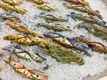 Raw flower crab or blue crab. Fresh raw flower crab or blue crab in the market, Thailand Royalty Free Stock Image