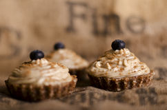 Raw food cupcakes Stock Image
