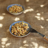 Raw food: healthy sprouts of lentils Stock Images