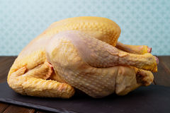 Raw free range chicken Stock Photos