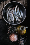 Raw fresh anchovies fishes. Lot of raw fresh anchovies fishes in black ceramic bowl with  and  salt and bottle of olive oil for marinade over black metal Stock Photography