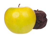 Raw apple Royalty Free Stock Image