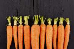 Raw fresh carrots with tails Royalty Free Stock Photos