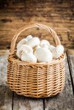 Raw fresh champignons in the basket royalty free stock photography