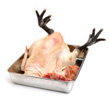 Raw fresh chicken Stock Photo