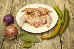 Raw fresh chicken on porcelain plate with lemon and chilli onion   on the wooden background Stock Photography