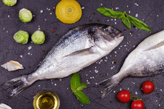 Raw fresh dorado fish with brussels sprouts, tomatoes, lemon, young potato and greens Royalty Free Stock Images