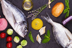 Raw fresh dorado fish with brussels sprouts, tomatoes, lemon, young potato and greens Royalty Free Stock Photography