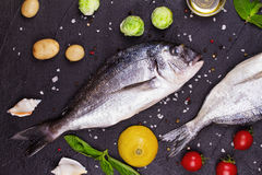 Raw fresh dorado fish with brussels sprouts, tomatoes, lemon, young potato and greens Royalty Free Stock Photo