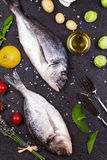 Raw fresh dorado fish with brussels sprouts, tomatoes, lemon, young potato and greens Stock Image