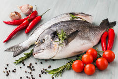 Raw fresh dorado fish with vegetables and spices Stock Photography