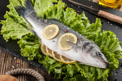 Raw fresh fish Royalty Free Stock Images