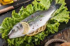 Raw fresh fish Stock Photos