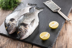 Raw fresh fish dorado Stock Photo