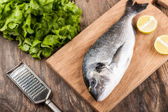 Raw fresh fish dorado Stock Photos