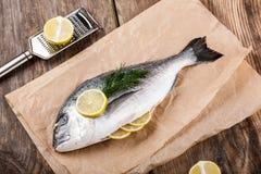 Raw fresh fish dorado Stock Photography