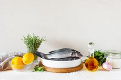 Raw fresh fish an ingredients on the white wooden table. Composition with copy space Royalty Free Stock Image