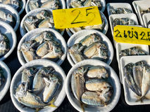 Raw fresh fish in market, seafood. For cooking stock photo