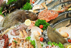 Raw fresh fish and seafood on street market. In Italy Stock Photo