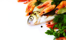 Raw fresh fish with vegetables Stock Photography