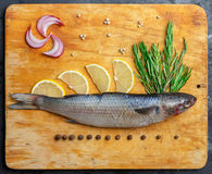 Raw fresh grey mullet fish lies on light wooden cutting board wi. Th composition of lemon segments, onion slices, rosemary branches and peppercorns around. Top Royalty Free Stock Photos