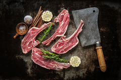 Raw fresh lamb meat on dark background Royalty Free Stock Photos
