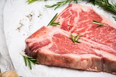 Raw fresh marble T-bone meat on the rustic background. Selective focus. Shallow depth of field royalty free stock photos