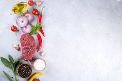 Raw fresh meat steak and seasoning spices  on a gray concrete background. Top view. Copy space Royalty Free Stock Image