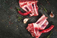 Raw lamb or beef ribs. Raw fresh meat, uncooked lamb or beef ribs with hot pepper, garlic and spices on dark stone background, copy space top view Stock Photos