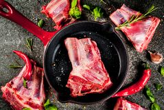 Raw lamb or beef ribs. Raw fresh meat, uncooked lamb or beef ribs with hot pepper, garlic and spices with frying pan skillet on dark stone background, copy space Stock Photo
