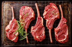 Raw fresh meat Veal ribs royalty free stock photography