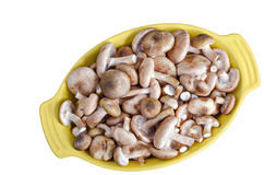 Raw fresh mushrooms in Dutch oven, on a white background Royalty Free Stock Photo