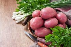 Raw fresh new potato Stock Photos