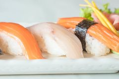 Raw and fresh nigiri sushi in white plate. Japanese food style Stock Image